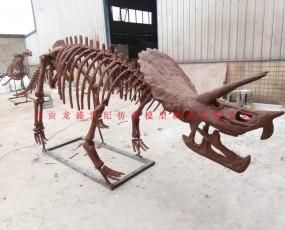 恐龙化石骨架制造  化石骨架展览