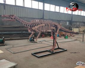 仿真恐龙化石_南阳龙骨架