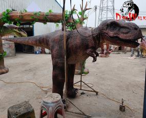 高跷恐龙服 - 【完工图】
