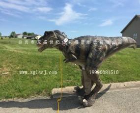 恐龙衣服 国外客户反馈